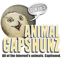 Animal Capshunz